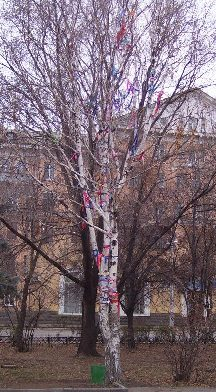 Ribbon tree 2